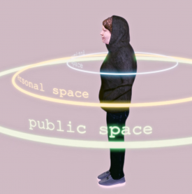 Logo: Valerie Wolf Gang - Presonal Space Data Collection Vol. 1